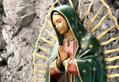 6 libros claves para profundizar en el mensaje de la Virgen de Guadalupe